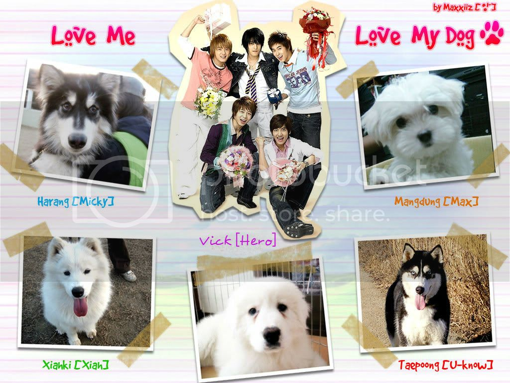 A Dog Eat Dog World - dbsk idols jaejoong jyj korean romance you - chapter image